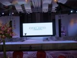 SMD Indoor Full Color LED Screen (P10)