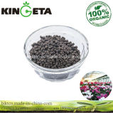 Kingeta Bamboo Charcoal Microbial Agent for Flowers