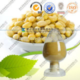 Soy Isoflavone Extract Powder 40%