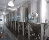 Customize Stainless Steel Conical Home Brew Fermenter for Sale (ACE-FJG-SF)