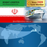 Cheap Fast Sea Freight From China to Iran/ Bandar Abbas/ Bushehr
