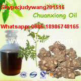 Natural Lovage Root Extract Oil for Hair Care, Shampoo