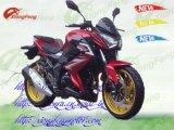 Racing Motorcycles, Moto Du Sport, Nouveau