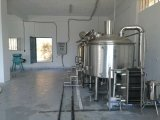 10bbl Fire-Directed Stainless Steel Brew Kettle
