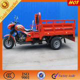 China Manufature Top Seller High Quality Tricycle /Cargo Trimoto