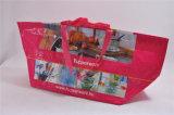 Custom Nonwoven Shopping Bag/PP Woven Shopping Bag/Recyclable Shopping Bag (MECO289)