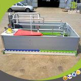 Hot DIP Galvanized Farrowing Crate High Quality Livestock Pig Pen