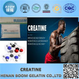 Wholesale Creatine Anhydrous/Monohydrate Top Quality