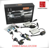 12V 55W Canbus Ballast HID Xenon Kit with 2 Years Warranty, Quality HID Kit