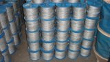 Galvanized 6X7+FC/Iws/Iwrc Steel Wire Rope for Hanging