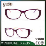 Fashion New Model Acetate Spectacle Optical Frame Eyeglass Eyewear