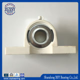 Ucf Series Cheap Bearing Pillow Block Bearing