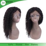 Top Grade 100% Virgin Hair Frontal Lace Wig Brazilian Hair