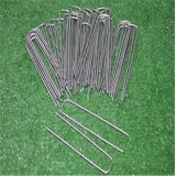 11 Guage Steel Wire Staples