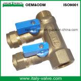 OEM&ODM Quality Brass Forged 2-Way Manifold (AV9068)