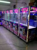 Colorful Electronic Amusement Gift Game Machine for Sale
