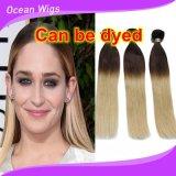 Fisrt -Class Human Brazilian Remy Omber Straight Hair Weft