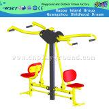 Amusement Park Exercise Equipment Gym Machine (HA-13208)
