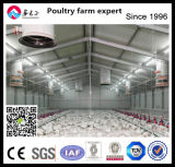 Cost Efficient Chicken Equipment and Prefab Poutry House