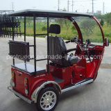One Back Passenger Disabled Tricycle for Gasoline