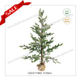H120cm Party Supplies Plastic Artificial Christmas Tree Christmas Glass Ornaments