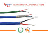 EX chromel via constantan thermocouple wire 2* 1.0 sqm with Flam retardant PVC insulation and armoured GI steel wire