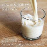 Non Dairy Creamer Susititude of Milk Powder