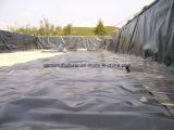 HDPE Geomembrane/Pond Liner LDPE Geomembrane