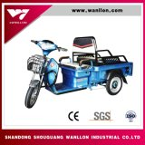 Low Price for Cargo Electric Tricycle with Cabin for Adults