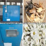 High Reputation Black Fungus Dryer