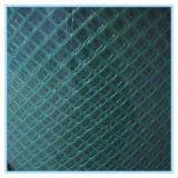 Plastic Wire Mesh (low price high quality)