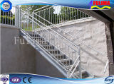 Hot Dipped Galvanized Steel Structure Ladder/ Steel Stair (FLM-SP-001)