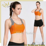 Hot Ladies Sportwear Yoga Bra Yoga Shorts Set