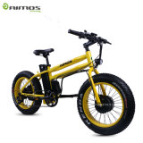 20*4.0 Double Motor 14.5ah 48V 750W Fat Tire Electric Bike