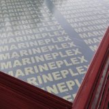 WBP Glue 18mm Phenolic Board Marine Plywood for Philippines Market