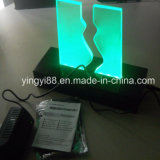 New Handmade Acrylic 3D LED Desk Table Light Lamp