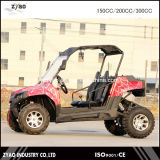 UTV 2000W/72V/51ah Electric UTV with 2 Seats 2WD or 4WD 4X4