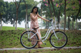 Aluminum Alloy City Bike Ladies Bicycle Bikes for Sale