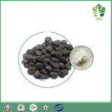 98% 5-Htp 98% Griffonia Seed Extract, Griffonia Seed P. E.