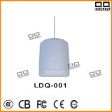 100V 20W Projector Speaker (LDQ-001, CE Approve)