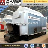 China New Biomass or Coal Fired Steam Boiler Cheaper Price