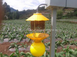 Solar Pest Light Trap (SW-SEL301-20W)