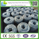 Factory Direct Cheap Galvanized Barbed Wire for Army