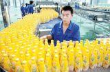 Turn-Key Juice Processing Line Plant