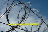 Lowest Price Concetina Razor Barbed Tape Wire