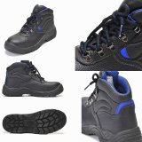 CE Certificate Stock Safety Shoes (9951)