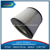 Xtsky Auto Part High Quality Auto Air Filter (OE: 5173166)