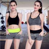 High Quality Wholesale Women Fashion Sport Yoga Wear Shorts and Bra