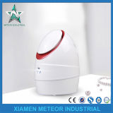 Family Use Portable Moisture Deep Cleansing Anion Face Steam Equipment