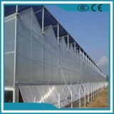 Factory Price PC Sheet Greenhouse for Vegetables/Flowers